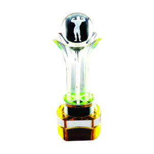 Crystal Globe Trophies CTICT029– Exclusive Crystal Globe Trophy