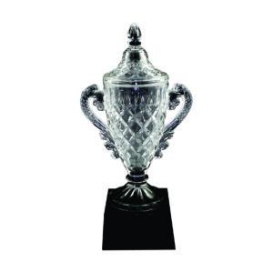 Crystal Vase Trophies CTICT023 – Exclusive Crystal Vase Trophy