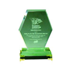 Elegant Jade Crystal Plaques CTIJP005 – Exclusive Crystal Jade Award
