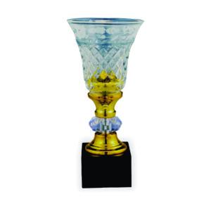 Crystal Vase Trophies CTICT103 – Exclusive Crystal Vase Trophy