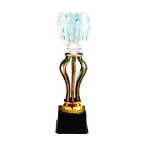 Crystal Vase Trophies CTICM045B – Exclusive Crystal Vase Trophy