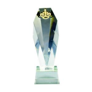 Beautiful Crystal Trophies CTICA351 – Exclusive Crystal Trophy
