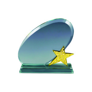 Star Crystal Trophies CTICP282 – Exclusive Crystal Star Trophy