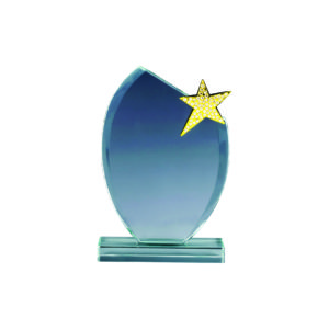 Star Crystal Trophies CTICA373 – Exclusive Crystal Star Trophy
