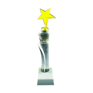 Star Crystal Trophies CTICT140 – Exclusive Crystal Star Trophy