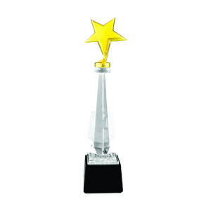 Star Crystal Trophies CTICT141 – Exclusive Crystal Star Trophy