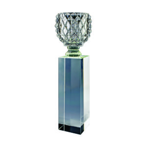 Crystal Vase Trophies CTICT145 – Exclusive Crystal Vase Trophy