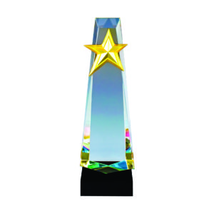 Star LED Trophies CTICT152 – Exclusive LED Crystal Star Trophy