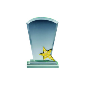 Star Crystal Plaques CTICA139 – Exclusive Crystal Star Award