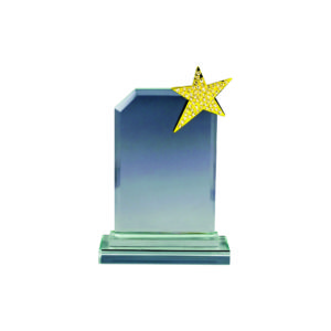 Star Crystal Plaques CTICA041 – Exclusive Crystal Star Award