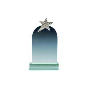 Star Crystal Plaques CTICA052 – Exclusive Crystal Star Award