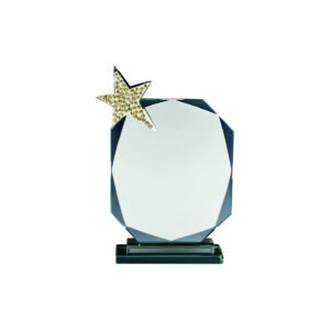 Star Crystal Plaques CTICA053 – Exclusive Crystal Star Award