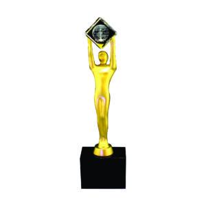 Award Winning Acrylic Trophies CTEAA051 – Exclusive Acrylic Trophy