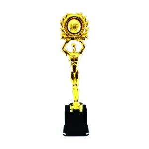 Award Winning Acrylic Trophies CTEAA048 – Exclusive Acrylic Trophy