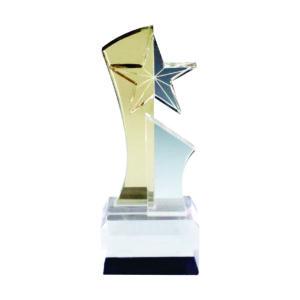 Custom Made Acrylic Plaques CTEAA044 – Exclusive Acrylic Award