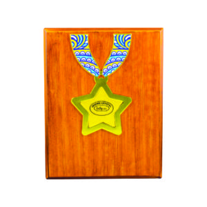 Wooden Plaques with Stars CTIWW604 – Exclusive Special Star Wooden Plaque