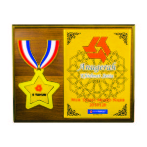 Wooden Plaques with Stars CTIWW605 – Exclusive Special Star Wooden Plaque