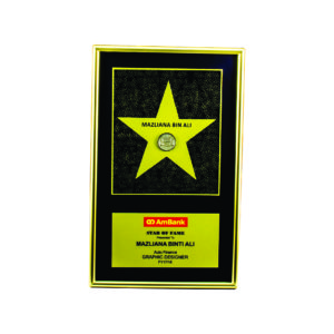 Wooden Plaques with Stars CTIWW608 – Exclusive Special Star Wooden Plaque