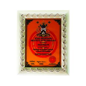 Silver Frames CTICF009 – Exclusive Silver Frame