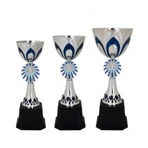 Acrylic Bowl Trophies CTAC4002 – Acrylic Bowl Trophy