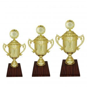 Beautiful Acrylic Trophies CTAC4006 – Acrylic Trophy