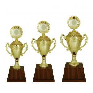 Beautiful Acrylic Trophies CTAC4007 – Acrylic Trophy