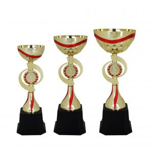 Acrylic Bowl Trophies CTAC4009 – Acrylic Bowl Trophy