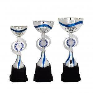 Acrylic Bowl Trophies CTAC4010 – Acrylic Bowl Trophy