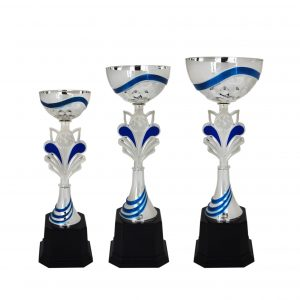 Acrylic Bowl Trophies CTAC4018 – Acrylic Bowl Trophy