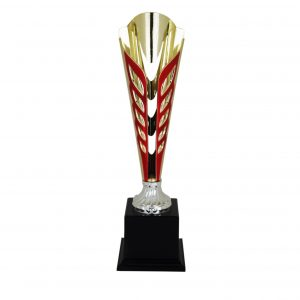 Beautiful Acrylic Trophies CTAC4022 – Acrylic Trophy