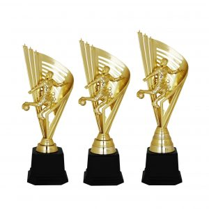 Acrylic Football Trophies CTAC4220 – Acrylic Football Trophy