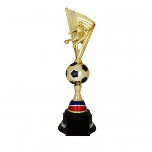 Acrylic Football Trophies CTAC4221 – Acrylic Football Trophy
