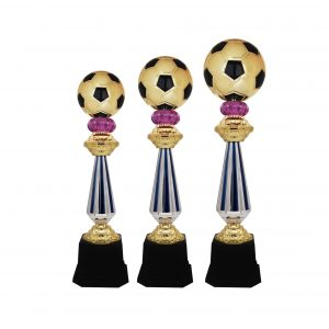 Acrylic Football Trophies CTAC4224 – Acrylic Football Trophy