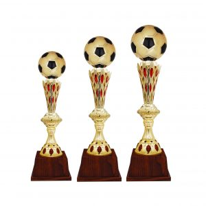 Acrylic Football Trophies CTAC4225 – Acrylic Football Trophy