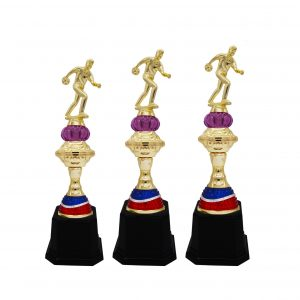 Bowling Tournament Acrylic Trophies CTAC4235 – Acrylic Bowling Trophy