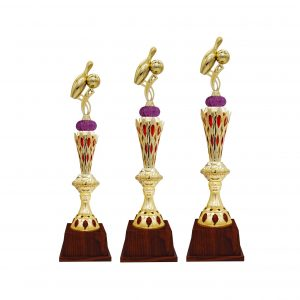 Bowling Tournament Acrylic Trophies CTAC4237 – Acrylic Bowling Trophy