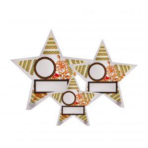 Beautiful Acrylic Plaques CTAC4262 – Acrylic Star Plaque