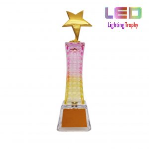 Star LED Trophies CTCR8301 – Exclusive LED Crystal Star Trophy