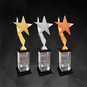 Plastic Star Trophies CTCR9146 – Exclusive Star Awards (GOLD, SILVER, BRONZE)