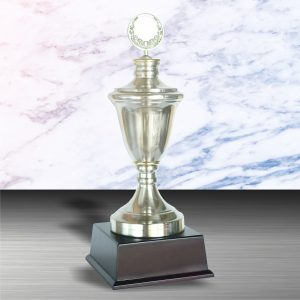 White Silver Trophies CTEXWS6001 – Exclusive White Silver Trophy