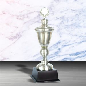 White Silver Trophies CTEXWS6003 – Exclusive White Silver Trophy