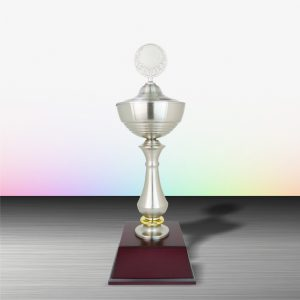 White Silver Trophies CTEXWS6005 – Exclusive White Silver Trophy