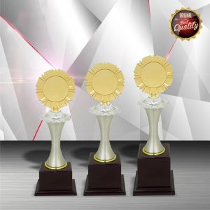 Gold colored White Silver Trophies CTEXWS6008 – Exclusive Gold White Silver Trophy