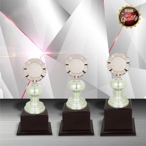 White Silver Trophies CTEXWS6011 – Exclusive White Silver Trophy