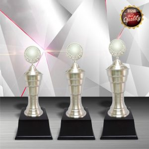 White Silver Trophies CTEXWS6024 – Exclusive White Silver Trophy