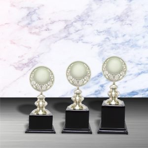 White Silver Trophies CTEXWS6025 – Exclusive White Silver Trophy