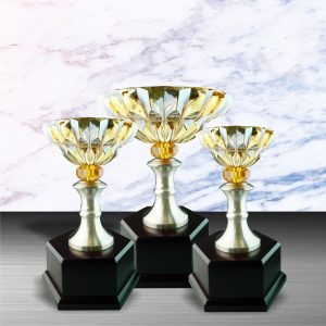 Silver Crystal Bowl Trophies CTEXWS6046 – Exclusive White Silver Trophy With Crystal Bowl