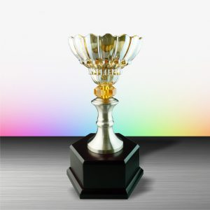 Silver Crystal Bowl Trophies CTEXWS6047 – Exclusive White Silver Trophy With Crystal Bowl