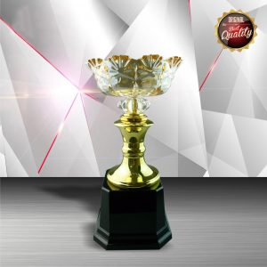 Silver Crystal Bowl Trophies CTEXWS6048 – Exclusive White Silver Trophy With Crystal Bowl