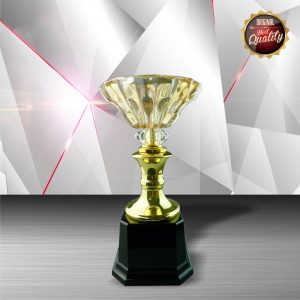 Silver Crystal Bowl Trophies CTEXWS6050 – Exclusive White Silver Trophy With Crystal Bowl